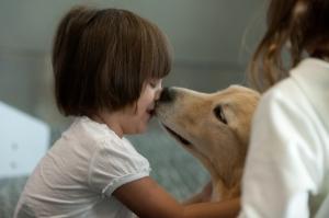 Abril Iriondo, de 3 anos, se encantou com Casey enquanto esperava o voo para Buenos Aires com a família.