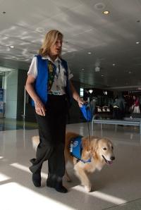 Casey e Liz em busca de um passageiro em necessidade de um chamego canino.